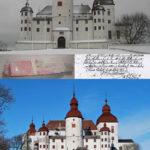 Spåntaken har färgats med rödtjära, efter Magnus Gabriel de la Gardies originalbrev